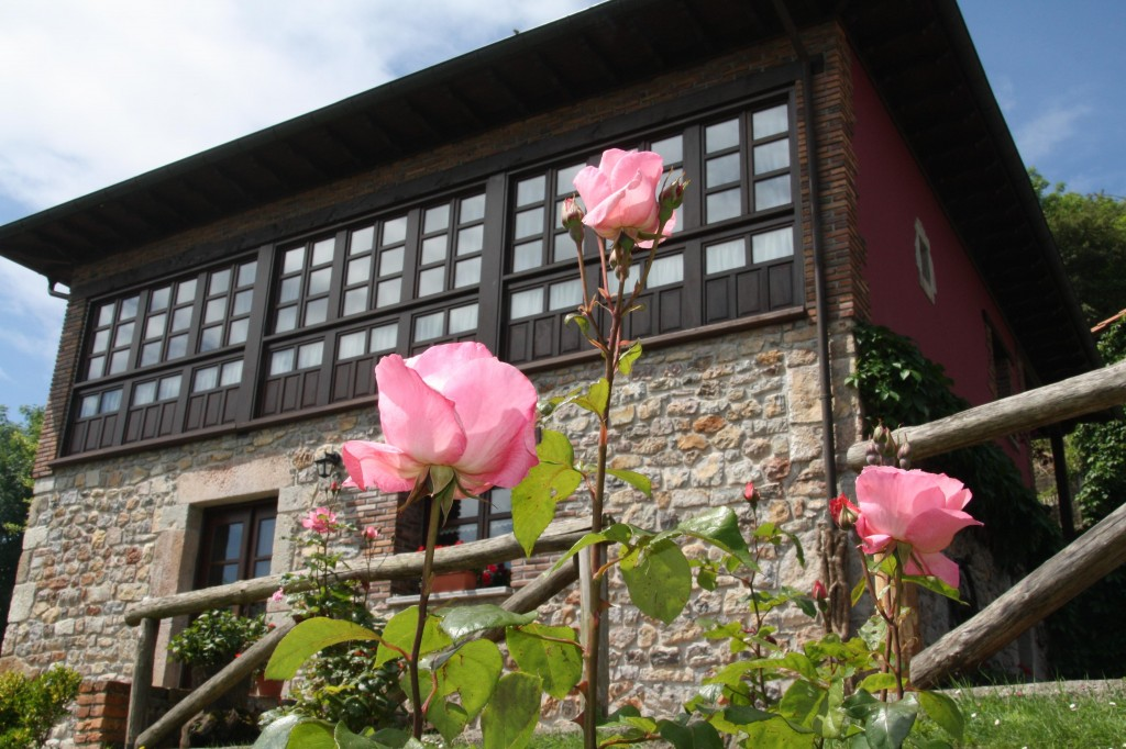 Rosas de El Trechal